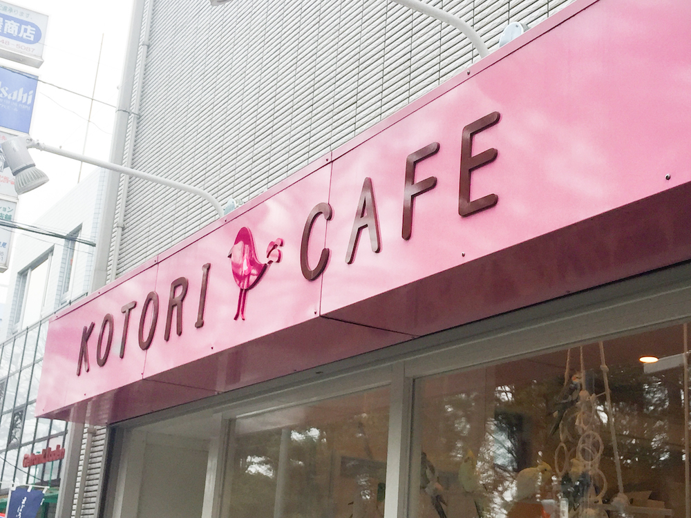 Kotori Cafe, Tokyo